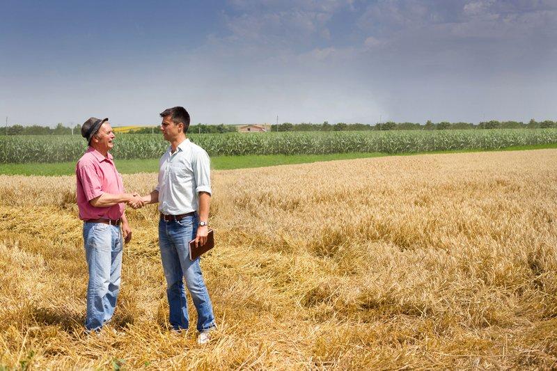 Negotiate Farmland Lease