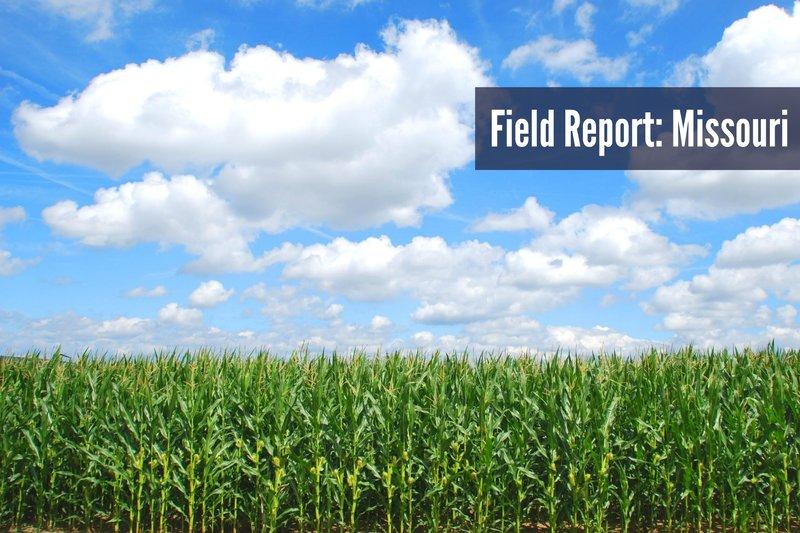field report MO