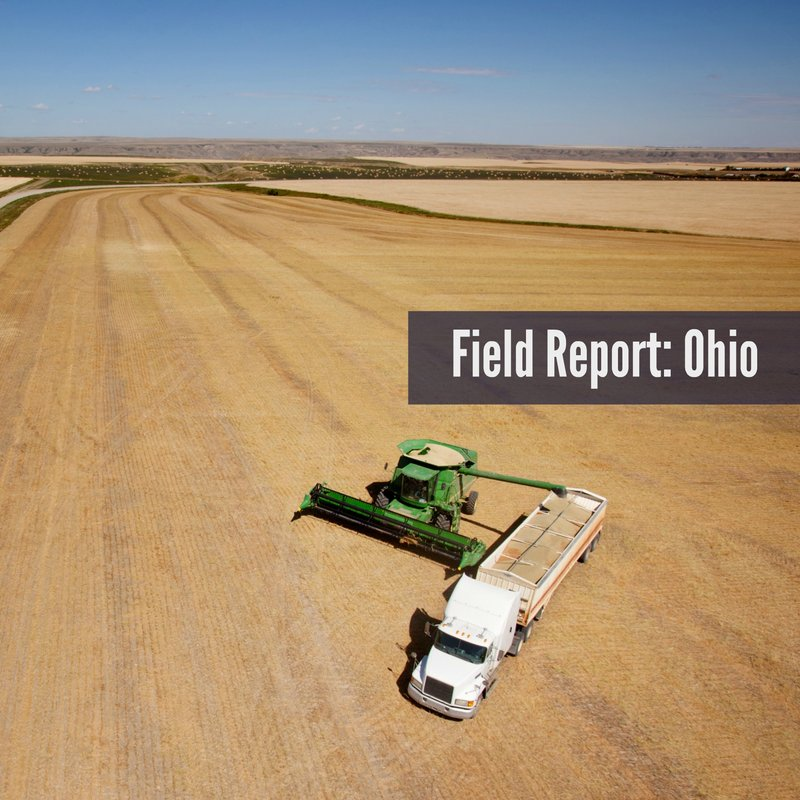 field report ohio fall