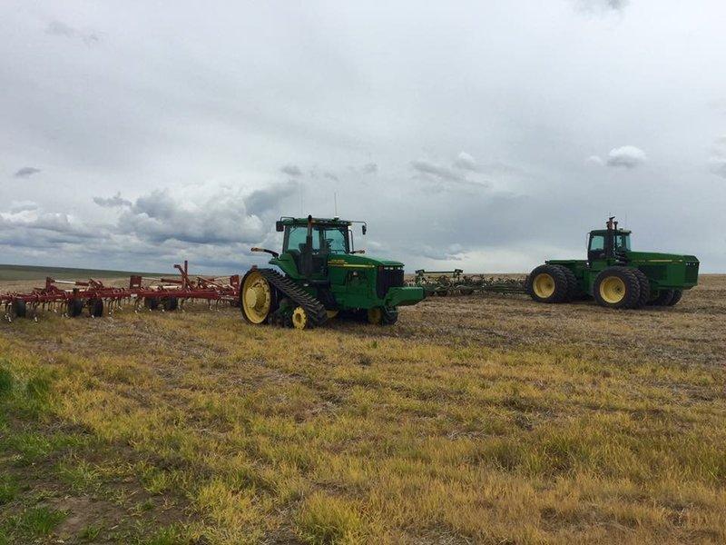steward farms field