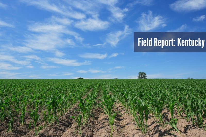 KY field report